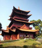 龙8国际|官网旅行社